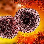 10 mitos sobre el cáncer, la epidemia que mata 8 millones de personas por año